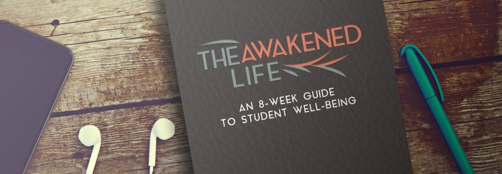 The Awakened Life 8 Week Guide To Student Well-Being Book
