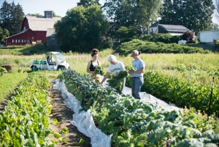One of the farms at Green Mountain College in Vermont, a learning laboratory for sustainability innovation for more than two decades.